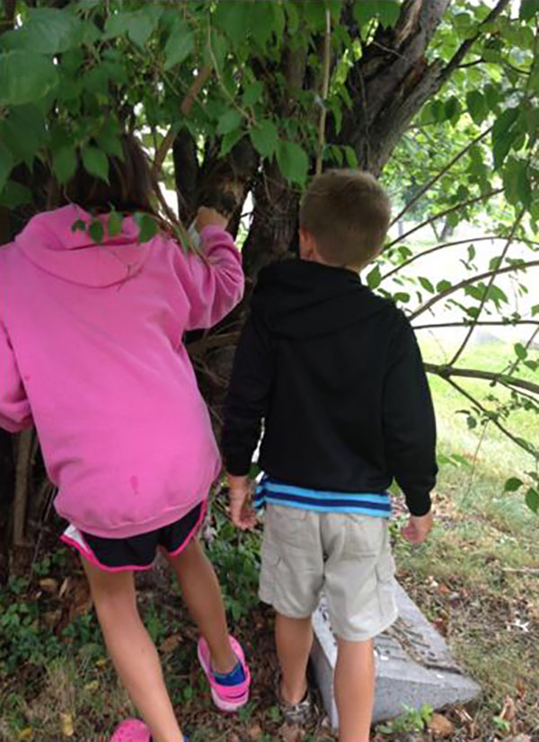 B and l letterboxing